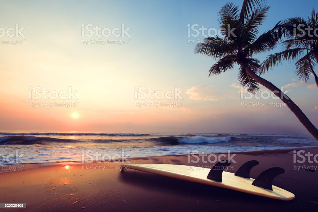 Surfboard on tropical beach at sunset stock photo