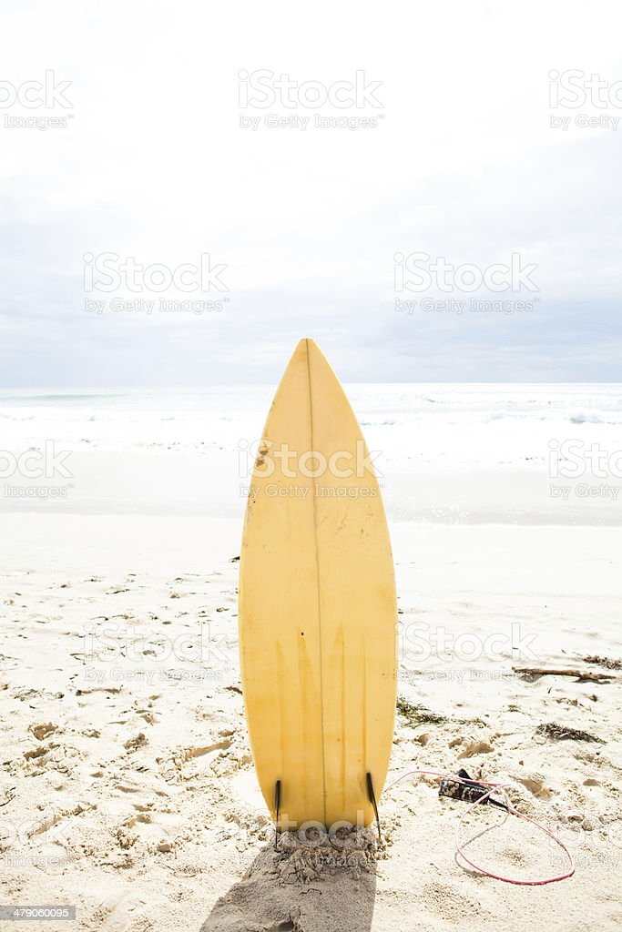 Surfboard standing upright in sand stock photo