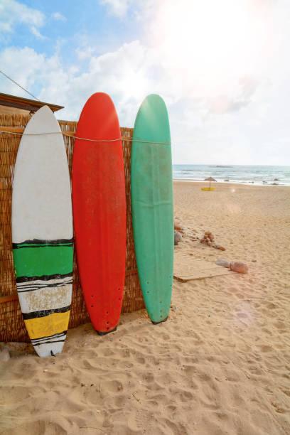 Pranchas de surf na Praia do Amado, praia e surfista local, Algarve Portugal Europa - foto de acervo