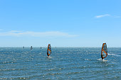 Surfer at beach - group of windsurfer on ocean
