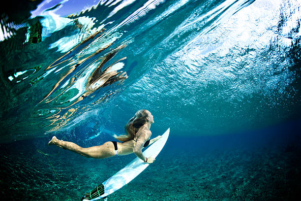 f7ee4f2442d09 Surfer girl duckdives a wave with reflection stock photo. Duck dive wave  shallow reef stock photo