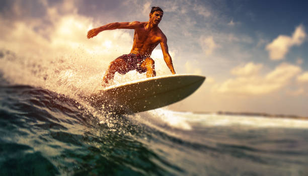 Surfer rides ocean wave stock photo