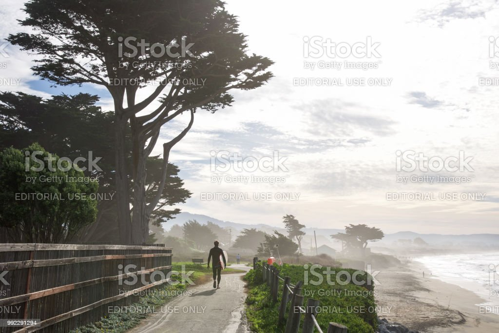 Surfer walking on path carrying his board in California stock photo