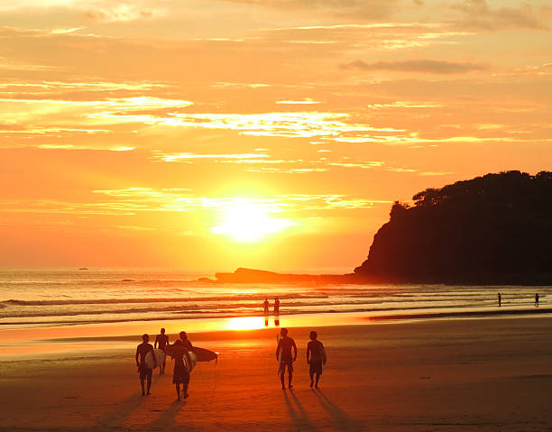 Surfers and beach goers gaze at the golden orange sunset  stock photo