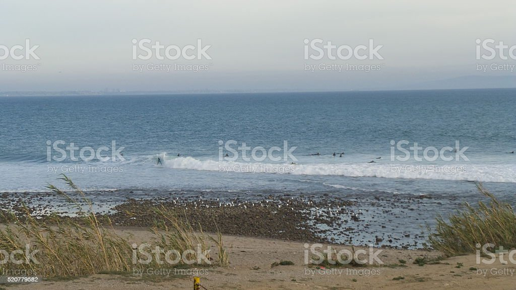 Surfers and Gulls in a Beach of Californa stock photo