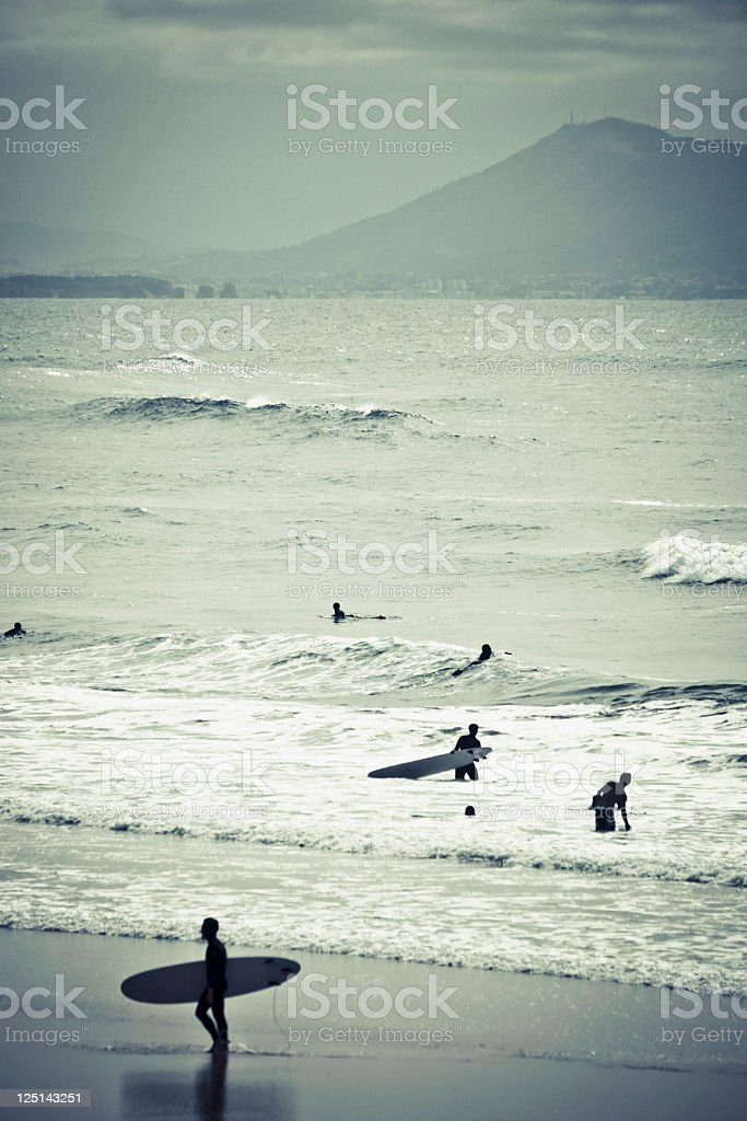 Surfers at the beach. stock photo