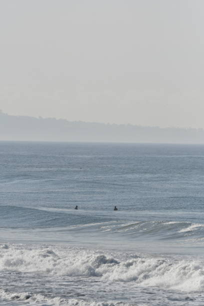surfers waiting for waves - steven harrie stock pictures, royalty-free photos & images
