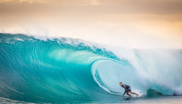 surfing a the perfect wave in indonesia - wave stock photos and pictures