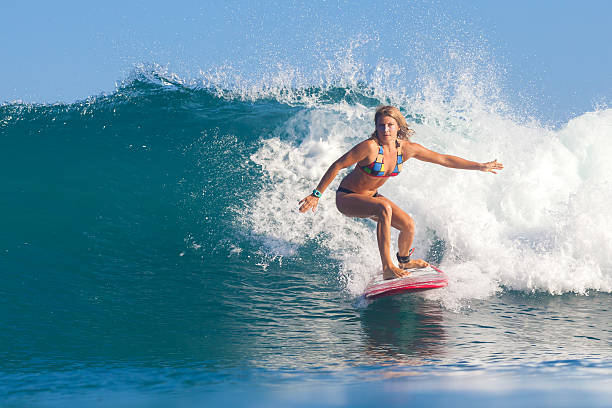 5 684 Surfer Girl Stock Photos Pictures Royalty Free Images Istock