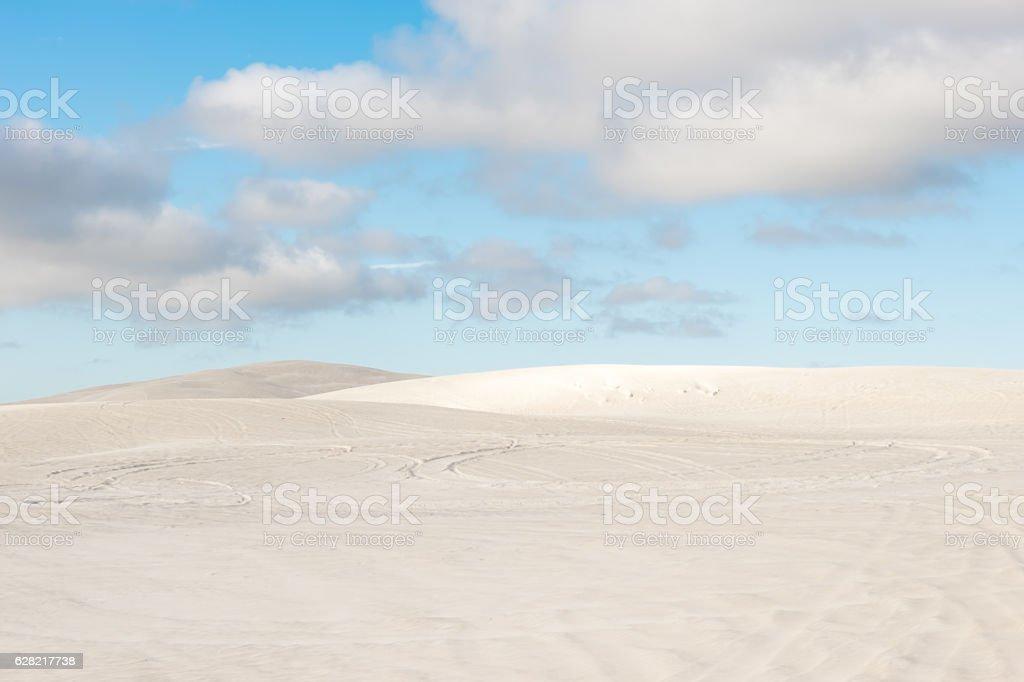 Surfing In Sand At Lancelin Sand Dunes In Western Australia