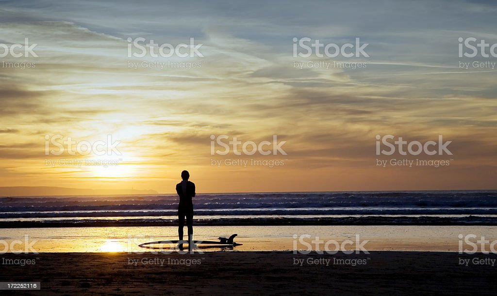Surf's Up royalty-free stock photo