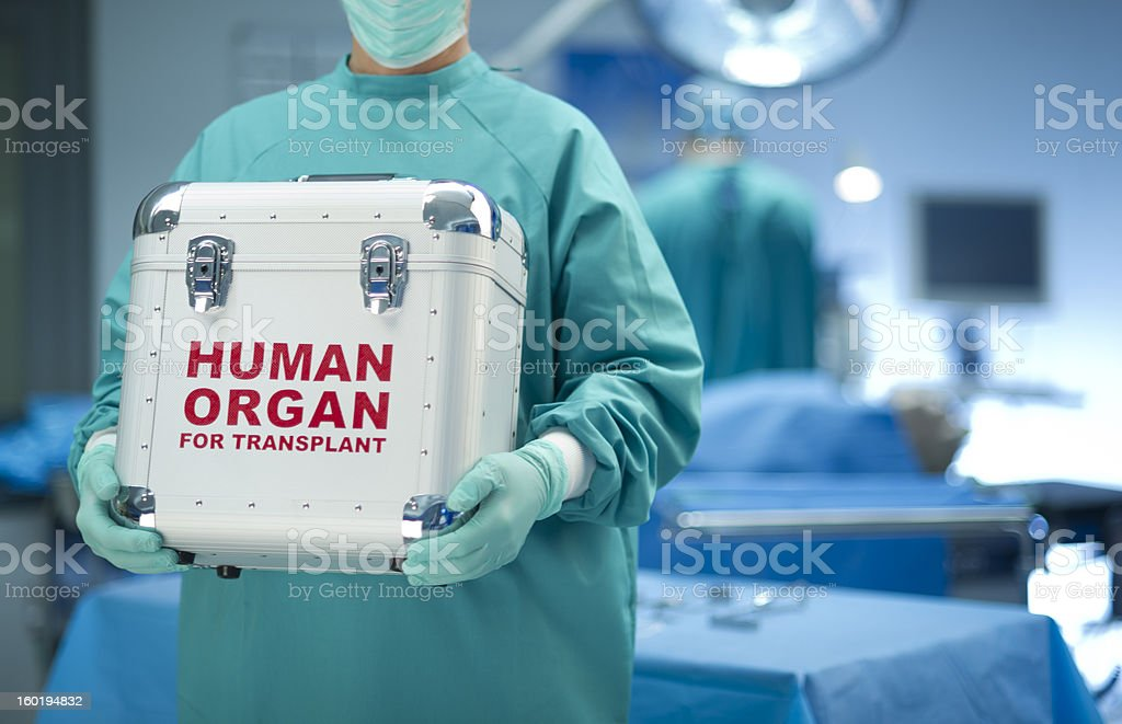 Surgeon with organ donation stock photo