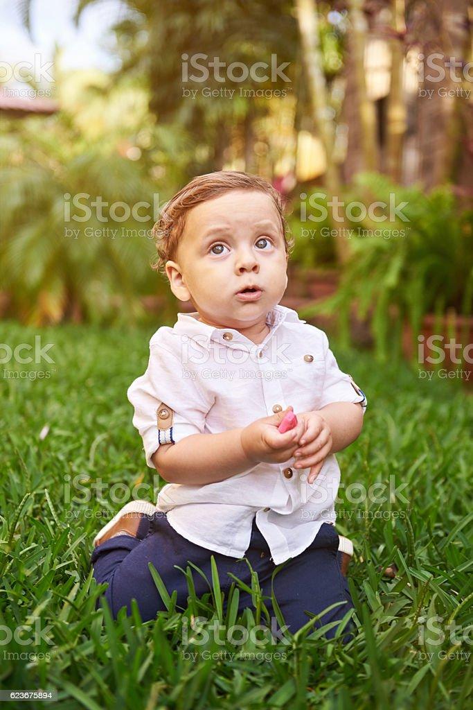 Surpised small boy stock photo