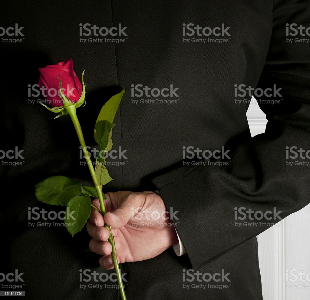 Surprise red rose stock photo