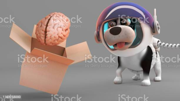 Surprised puppy dog in spacesuit watches a brain rise out of box 3d picture id1163233000?b=1&k=6&m=1163233000&s=612x612&h=jm7hibilxnq qtshdd6xoheoxxyzq0zpnjv0cigdhya=