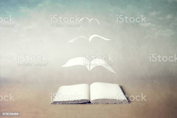 Photo of surreal book concept pages flying out of book