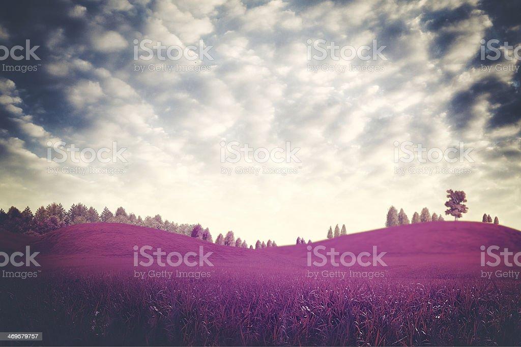 Surreal dramatic landscape stock photo
