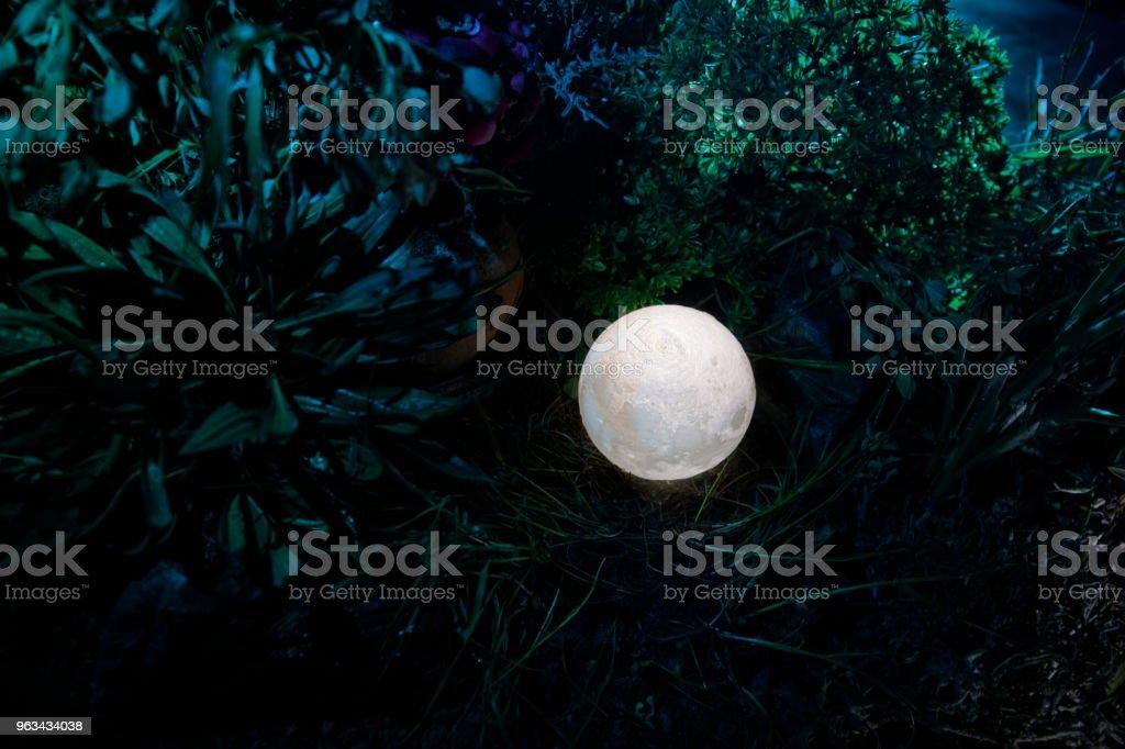 Concept de fantaisie surréaliste - pleine lune couché dans l'herbe. Photo décoré. Résumé des origines de fée. - Photo de Arbre libre de droits