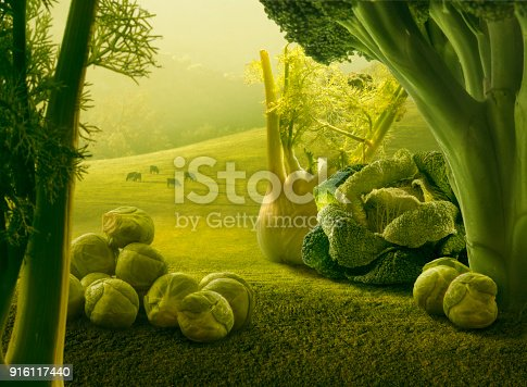 istock Surreal giant green vegetables in sunset field 916117440