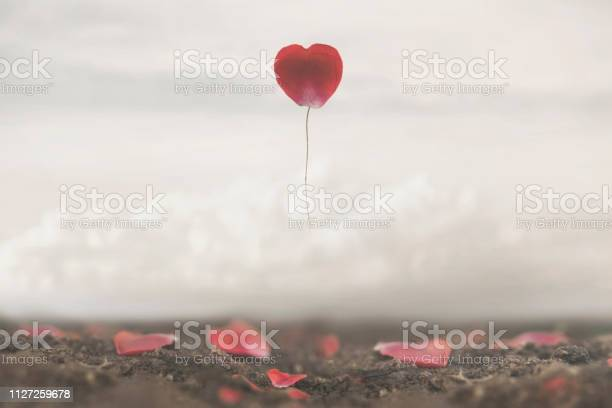 Surreal image of a rose petal shaped like a heart flying free in the picture id1127259678?b=1&k=6&m=1127259678&s=612x612&h=bulj oatdvflxcyroruvwunmgkhwrbe2tn46wxhwroy=