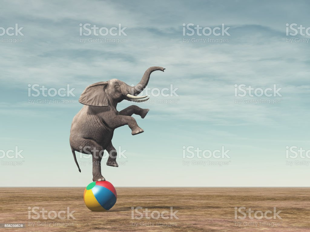 Surreal image of an elephant balancing on a beach ball stock photo