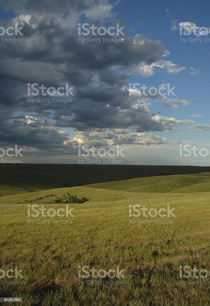 Surreal Landscape royalty-free stock photo
