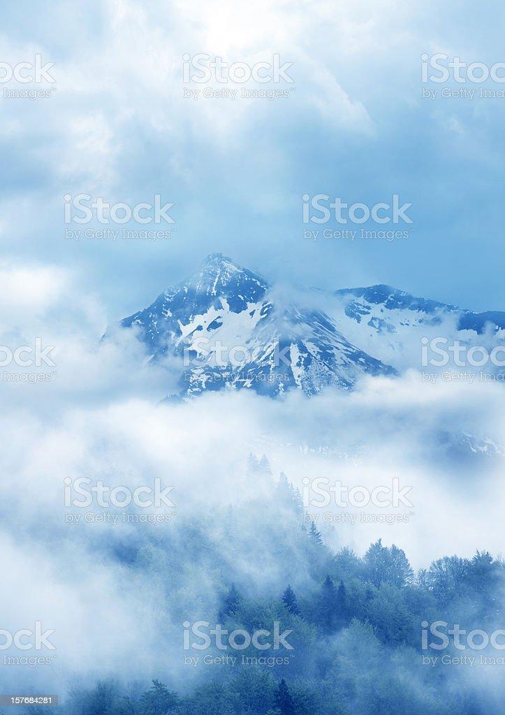 surreal nature stock photo