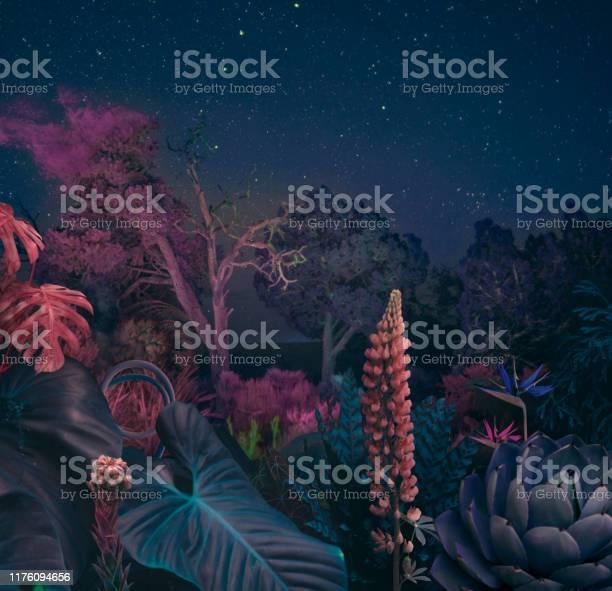 Surreal night forest picture id1176094656?b=1&k=6&m=1176094656&s=612x612&h= mcsg3p4la 57czupkyfbiic1yyrokxtlktlpdoulgu=