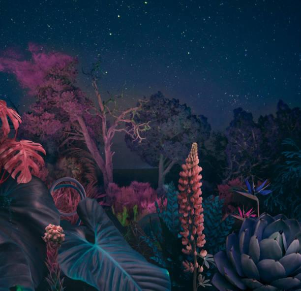 gerçeküstü gece ormanı - peri hayali karakter stok fotoğraflar ve resimler