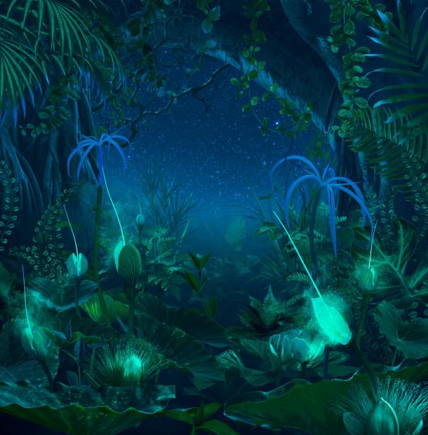 surreale nacht dschungel mit leuchtenden pflanzen und blumen - fee stock-fotos und bilder