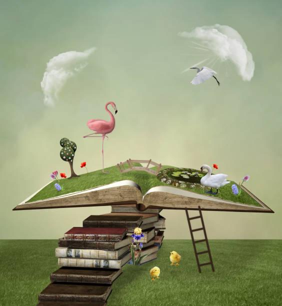 surreal offenes buch mit einem rosa flamingo - märchenillustrationen stock-fotos und bilder