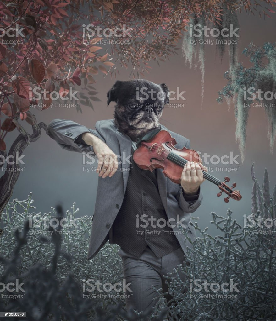 Surreal portrait of dog stock photo