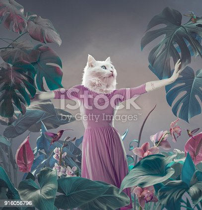 Surreal portrait of white cat