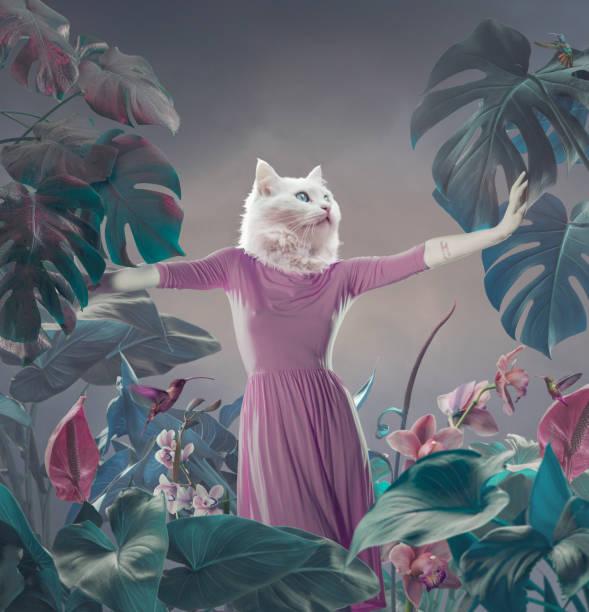 Surreal portrait of white cat stock photo