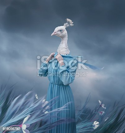 istock Surreal portrait of white peacock 916056792