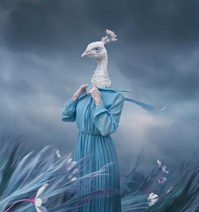 istock Surreal portrait of white peacock 916056792