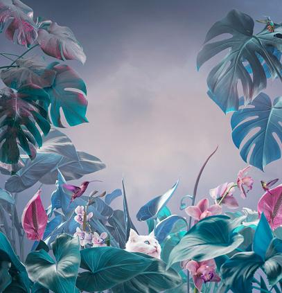 超現實主義的熱帶背景 照片檔及更多 丁香花 照片