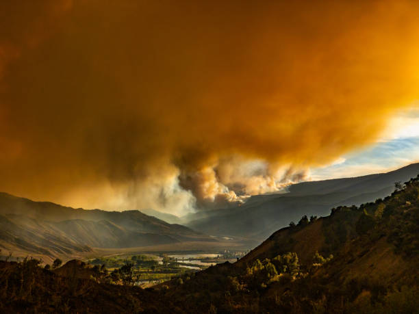 Surreal Wildfire Forest Fire Landscape stock photo