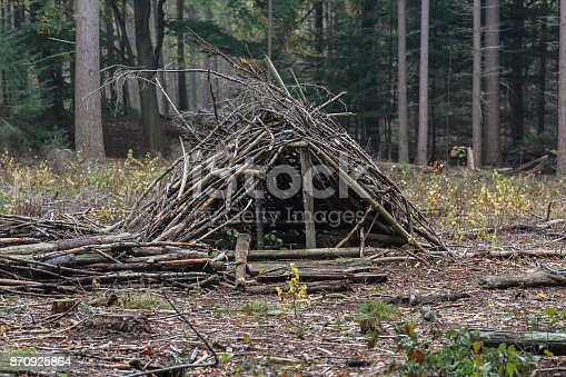 istock survival shelter in forest 870925864