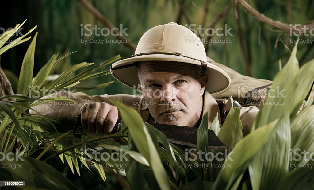 Surviving in the jungle stock photo