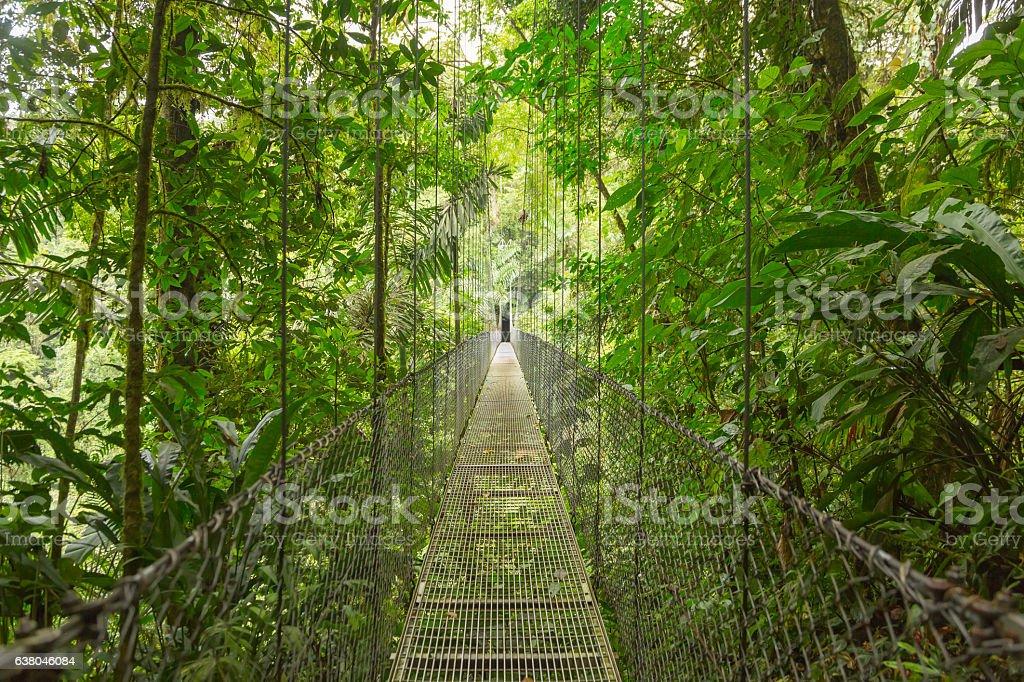 Suspended bridge, Costa Rica stock photo