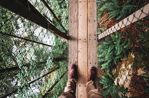 Suspended bridge in north america