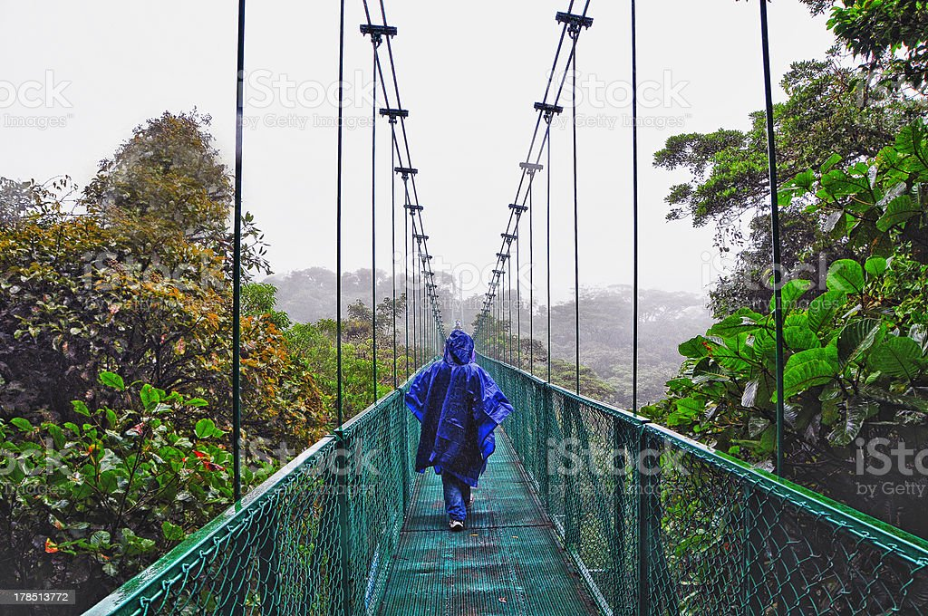 Suspended Bridge in the cloud forest royalty-free stock photo