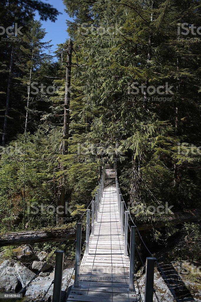 Suspension bridge across river. royalty free stockfoto