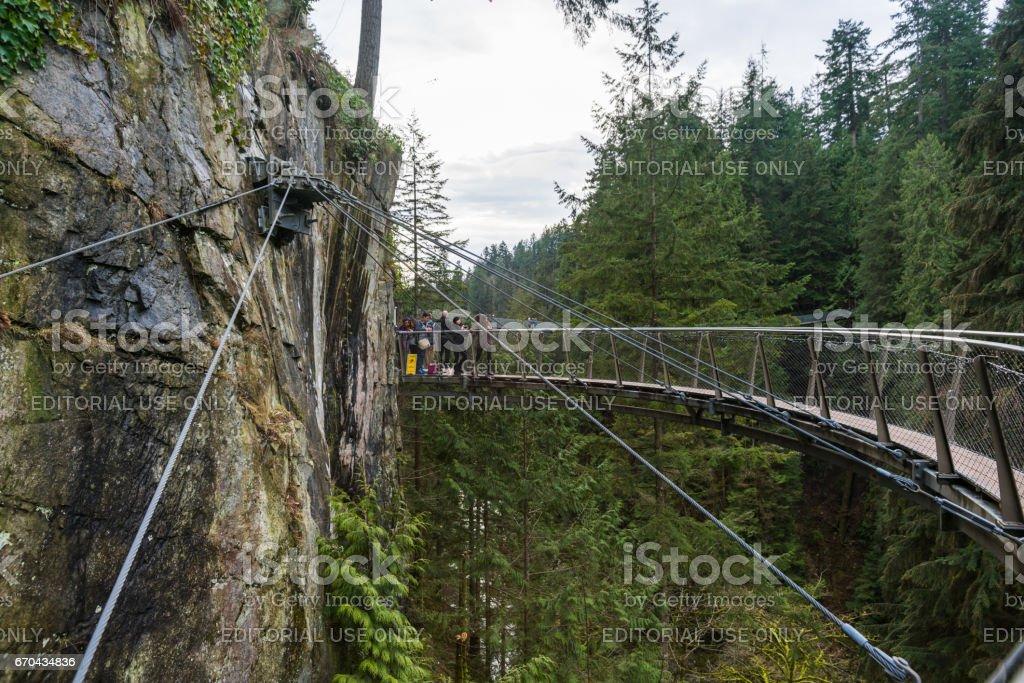 A suspension bridge at the Capilano Suspension Bridge Park stock photo