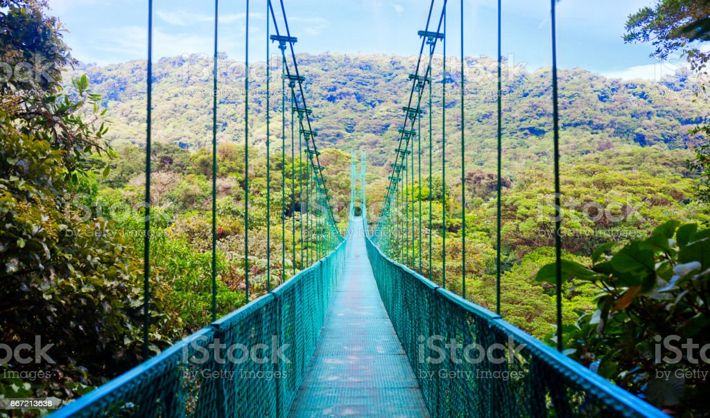Suspension bridge in rain forest, Costa Rica