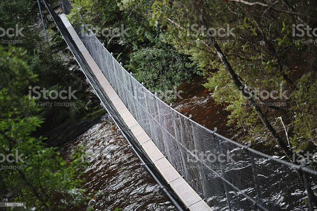 Suspension Bridge in the forest, royalty-free stock photo