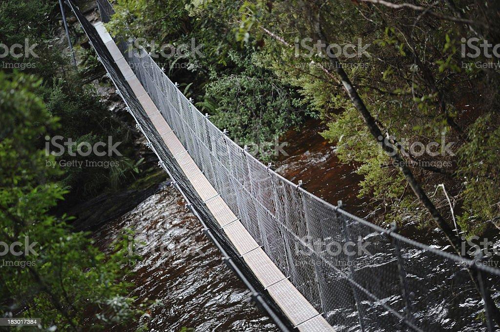 Suspension Bridge in the forest, stock photo