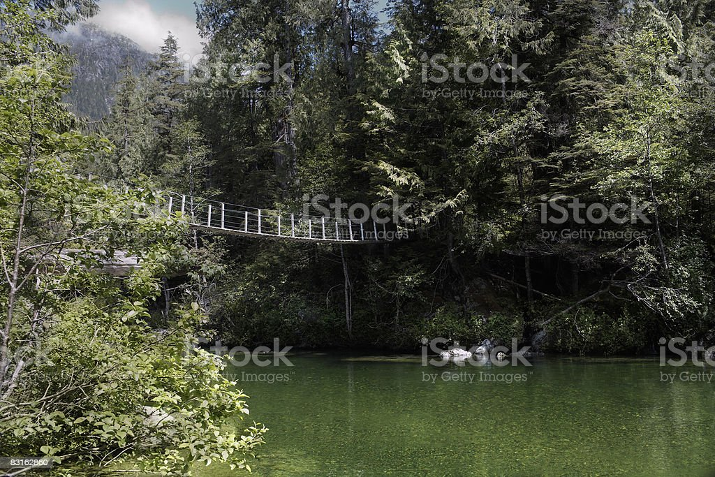 Ponte sospeso sul fiume. foto stock royalty-free