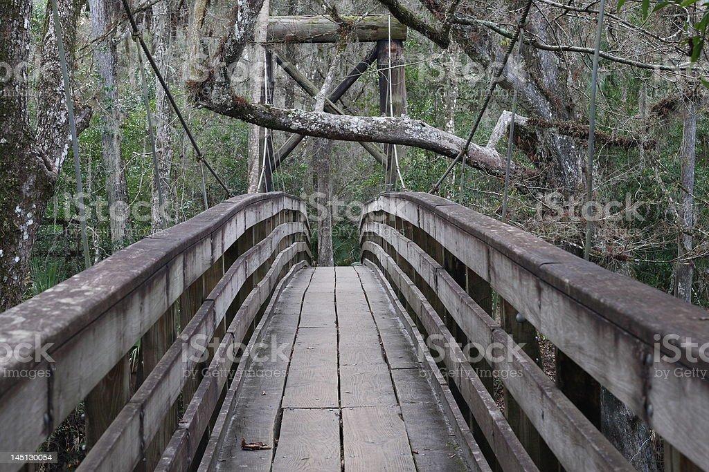 suspension bridge suspension bridge at hillsborough river state park Boardwalk Stock Photo